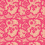 Lace seamless pattern with flowers Stock Photos