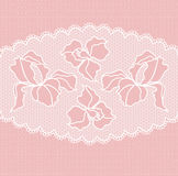 Lace floral seamless pattern Stock Photos