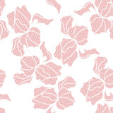 Lace floral seamless pattern Stock Photography