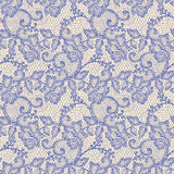 Lace Seamless pattern. Stock Image