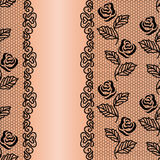 Lace floral background Stock Image