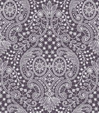 Lace Seamless Pattern. Royalty Free Stock Images