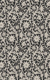 Lace Seamless Pattern. Royalty Free Stock Image