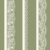 Lace Seamless Pattern. Stock Photos