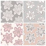 Set of four lace seamless patterns with flowers Royalty Free Stock Images