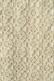Lace texture Royalty Free Stock Photos