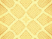 Lace Texture Pattern In Gold. A gold and white lace fabric texture background pattern Stock Images