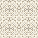 Lace texture Stock Image