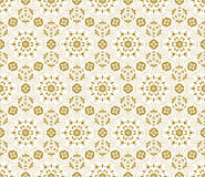 Lace vector fabric seamless  pattern with flowers Royalty Free Stock Images
