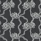 Lace vector fabric seamless pattern Stock Photography