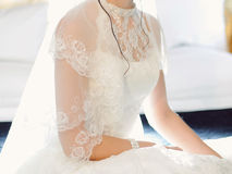 Lace Veil Royalty Free Stock Image