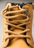 Laces of a boot Stock Photography