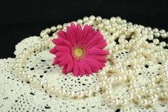 Lacet et perles de marguerite Image libre de droits