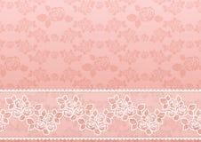 Lacet Rose Photos stock