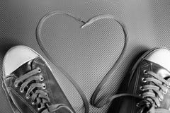 Lacets des chaussures argentées Photo libre de droits