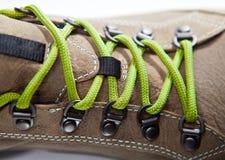 Lacets verts Photographie stock libre de droits