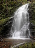 Lacey Waterfall in the Forest Stock Photos