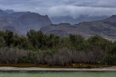 Lacharca - naturreserv Royaltyfri Bild
