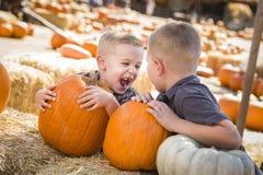 Lachende Jungen am Kürbis-Flecken Spaß sprechend und habend Lizenzfreies Stockbild
