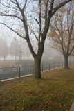 Lachine Canal in Montreal. The Foggy Lachine Canal in Lachine, Montreal, Quebec, Canada Stock Photography