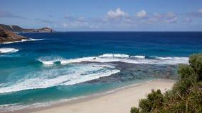 Lachs durchlöchert Strand Lizenzfreies Stockbild