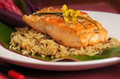 Lachse auf Reis Lizenzfreie Stockfotos