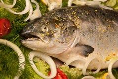 Lachse mit Gemüse lizenzfreie stockfotos