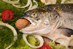 Lachse mit Gemüse lizenzfreie stockfotografie
