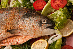 Lachse mit Gemüse Lizenzfreies Stockfoto