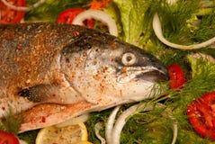 Lachse mit Gemüse stockfoto