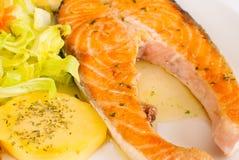 Lachse mit Gemüse lizenzfreies stockbild