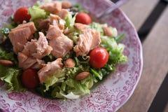 Lachse und Salat Lizenzfreie Stockbilder