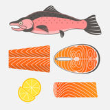 Lachsfisch- und Lachsfleisch auf weißem Hintergrund Frischer roher Salmo Stockfotografie