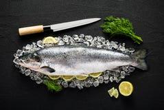 Lachsfische und Bestandteile auf Eis auf einer schwarzen Steintabelle Stockfotografie