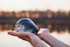 Lachskopf auf den ausgestreckten Armen eines Mannes ?ber dem Wasser Kochen von Fischen in einer Wanderung lizenzfreie stockfotos