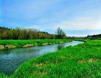 Lachsnebenfluss-Sumpfland Stockfotografie