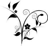 Lack decorative design Royalty Free Stock Photo