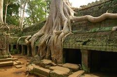 Lack-Läufer des alten kambodschanischen Tempels Stockbild
