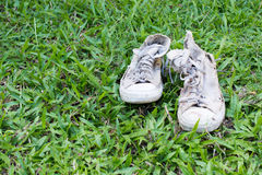 Lack old shoe lay on the grass green. Royalty Free Stock Photo