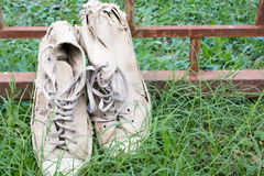 Lack old shoe lay on the grass green. Stock Images