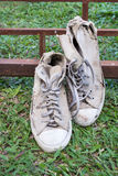 Lack old shoe lay on the grass green. Stock Photography