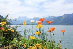 Lacke et montagnes avec des fleurs dans le jour ensoleillé Images stock