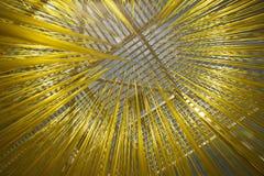 Lacma spaghetti rzeźba fotografia royalty free