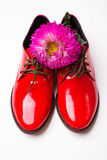 Lacquer red shoes Stock Photography
