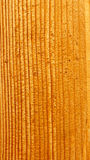 Lacquered wooden board Stock Photography