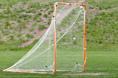 Lacrosse ball in net for a goal Royalty Free Stock Images