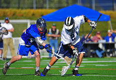 Lacrosse ball sweep Royalty Free Stock Images