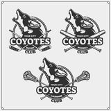 Lacrosse, baseball and hockey logos and labels. Sport club emblems with coyote.
