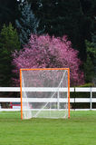 Lacrosse Goal portrait Royalty Free Stock Photography