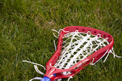 Lacrosse Head. A women's lacrosse stick laying on the ground Stock Photos